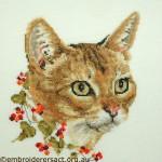 Abyssinian Cat x-stitched by Barbara Adams