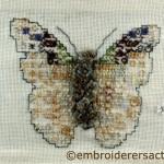 Bogong Moth stitched postcard by Margaret Kelemen
