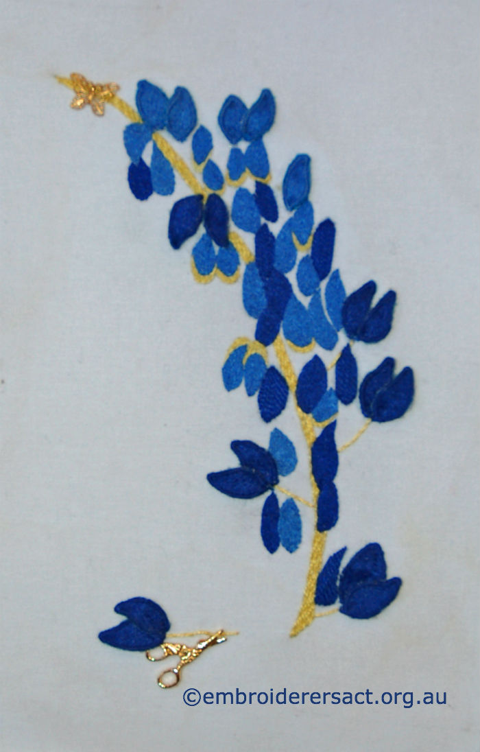 Lupins by Margaret Thompson