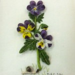 Stumpwork of Viola Tricolor