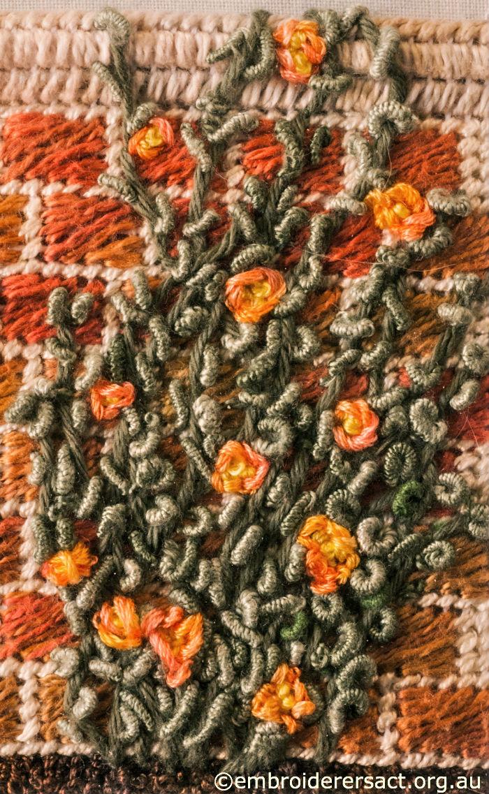 Climbing rose detail