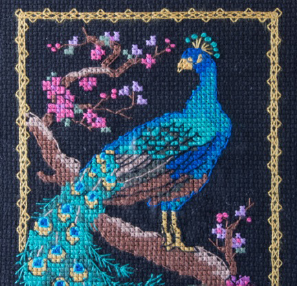Detail of Peacock Cross Stitch