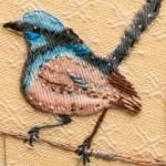 Stitched Blue Wren