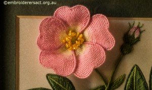 Close up of Pink Stumpwork Dog Rose by Lorna Loveland