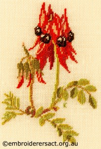Sturtand s Desert Pea stitched by Kay Reid