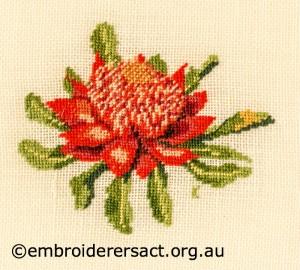 Waratah stitched by Kay Reid