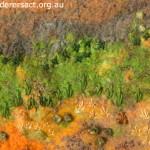 Stitched landscape