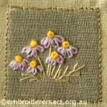 Purple and Gold Brachycome Flowers